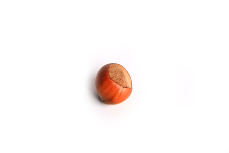 hazelnut in shell isolated on white background