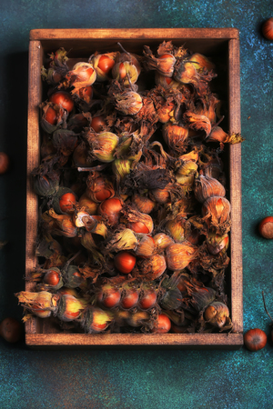 hazelnut nuts in the skin on a dark retro style background
