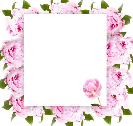 Creative layout with floral ornament. Flowers Peonies. Flower pattern. Flat lay. Nature concept Imagens