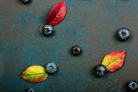 Blueberry berries with leaves on a dark background. beautiful autumn background 免版税图像