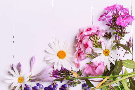 summer flowers on a white wooden background with space for text view from above a flat view springtime Zdjęcie Seryjne