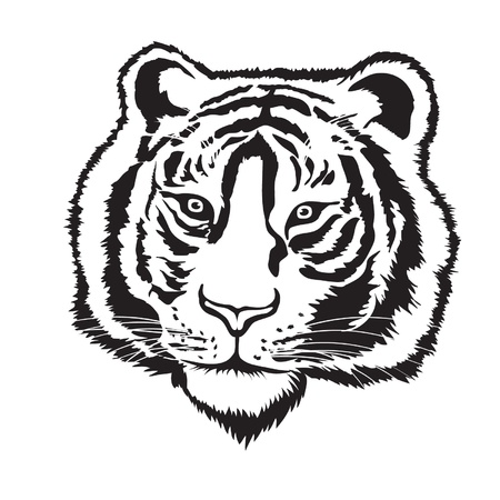 head silhouette: Tiger head silhouette on white background, Vector Illustration