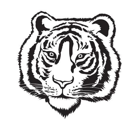 silueta tigre: Tiger silueta cabeza sobre fondo blanco, vector