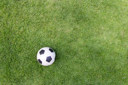 grass background: soccer ball on green grass