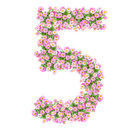 Numbers 5 made from Zinnias flowers