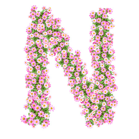 Letter N alphabet with zinnia flower ABC concept type as logo. Typography design Stock Photo
