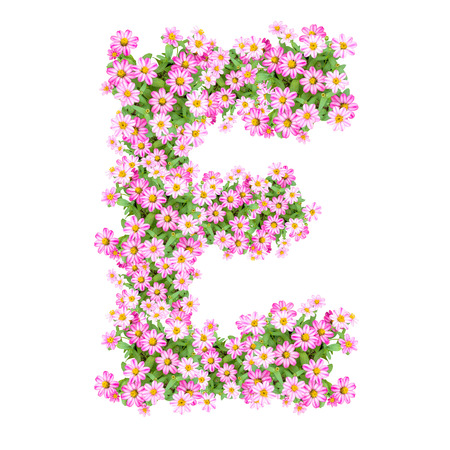 e alphabet: Letter E alphabet with zinnia flower ABC concept type as logo. Typography design