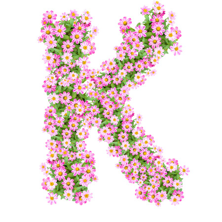 Letter K alphabet with zinnia flower ABC concept type as logo. Typography design