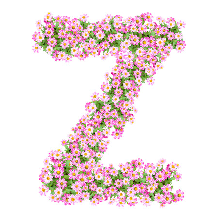 Letter Z alphabet with zinnia flower ABC concept type as logo. Typography design Stock Photo