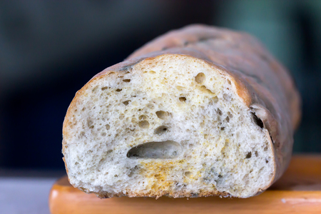 biology backgrounds: Mold on bread Stock Photo