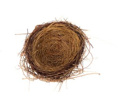 Bird Nest Isolated on white background.