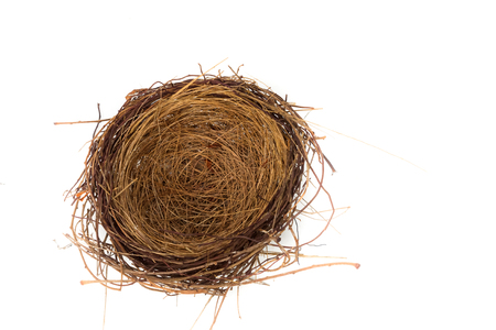 Bird Nest Isolated  on white background. Stock Photo
