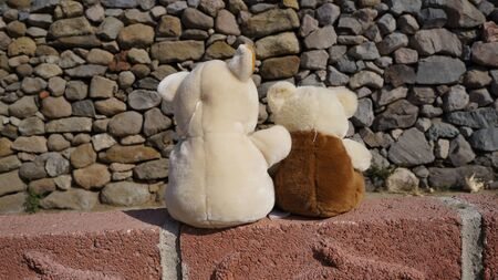 bears with a great friendship sitting clearing their minds and divertimentoce in a septum Zdjęcie Seryjne