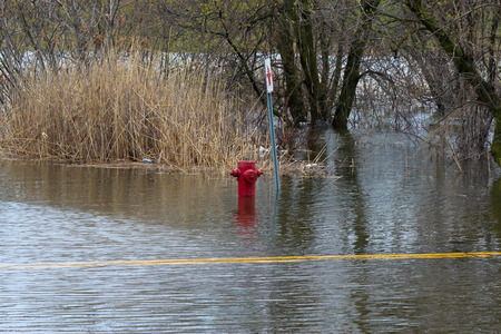 pooled: A fire hydrant on Oka Road in St-Joseph du Lac, completely flooded. Editorial