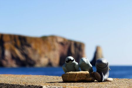 Manfred the manatee his father and his cousin the shark in front of the Perce Rock Stock Photo
