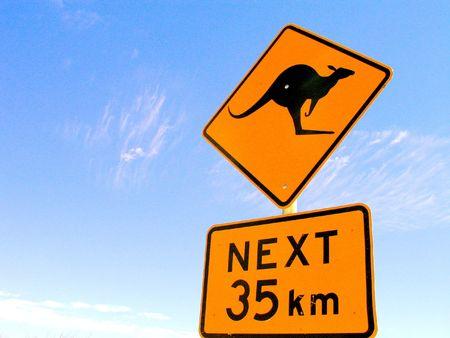 marsupial: australia Stock Photo