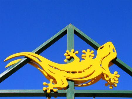 Gecko photo