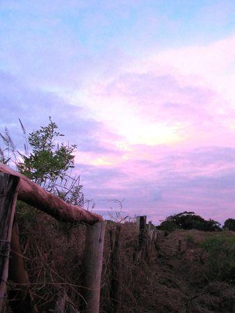 rapa nui: Rapa Nui  Foto de archivo