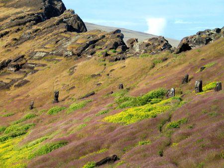 moai: moai