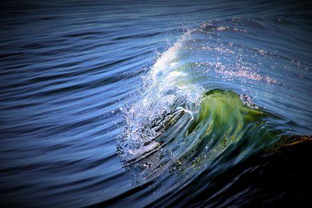 Wave -Delta del Llobregat