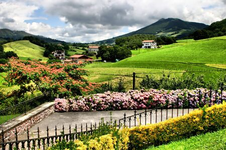Nature in Basque country,Spain