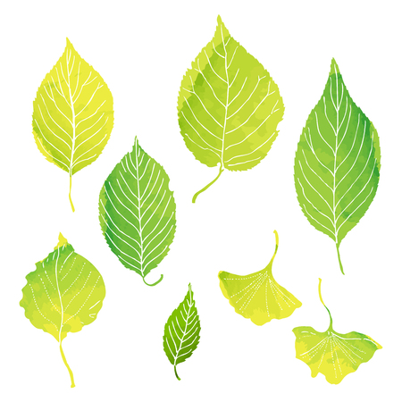 Leaves illustrations with vector data  イラスト・ベクター素材