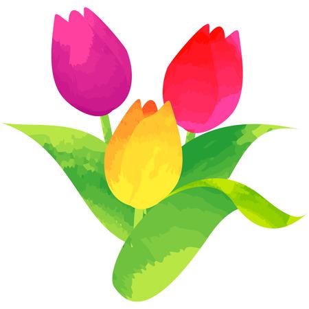 튤립 탄생 꽃 벡터 그림 수채화 페인트 텍스처
