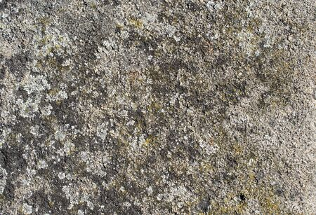 voids: Gray colored plaster as a background or texture