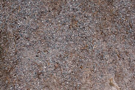 small bright pebbles and gravel as background or texture Imagens