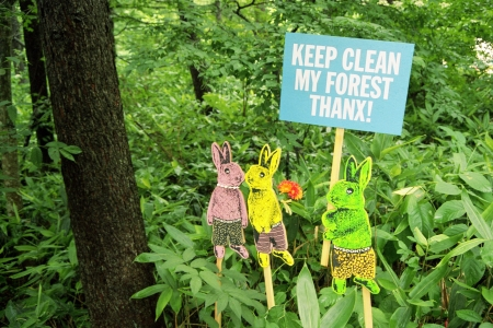 keep clean forest Signboard of rabbit s picture in forest  photo