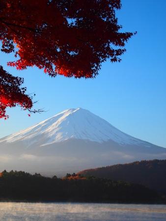 Mount Fuji and  Lake Kawaguchi with autumn yellow leaves  photo