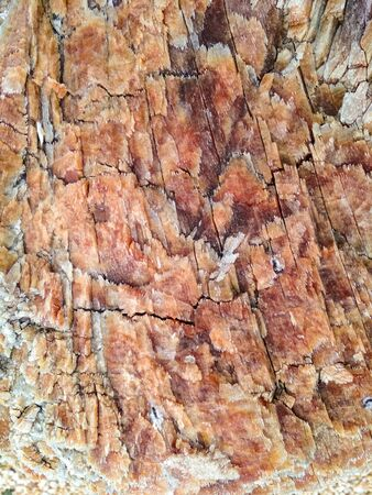 Bright brown stone background. Stone texture and background