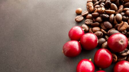 Red coffee beans and the roasted coffee beans isolated on black background
