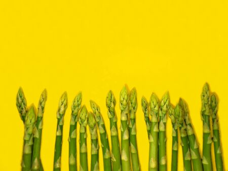 Bunch of raw asparagus. Fresh green asparagus on a yellow background