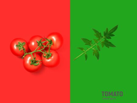 Tomato isolated on white background. 写真素材