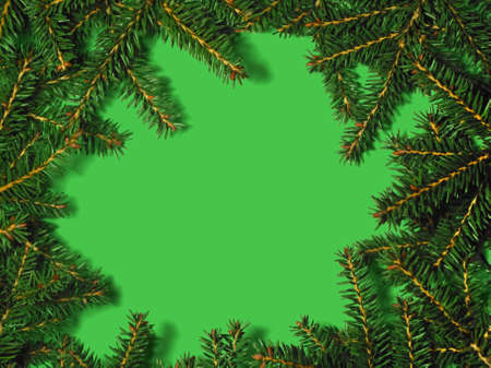 Christmas tree concept. Layout made of Christmas tree branches with copy space. Flat lay. New Year concept. Stock fotó