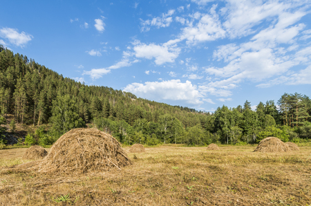 urals: Republic of Bashkortostan, Russia. Haystacks in the mountains of the Southern Urals.