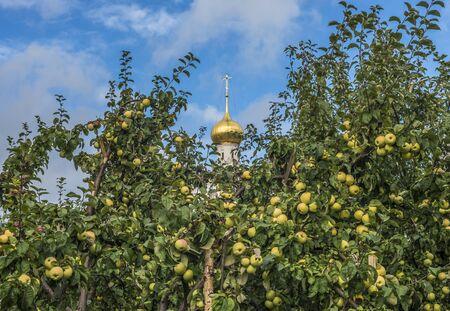 Rostov, Russia - September 13, 2016: the Bishop's Apple orchard in the Rostov Kremlin.