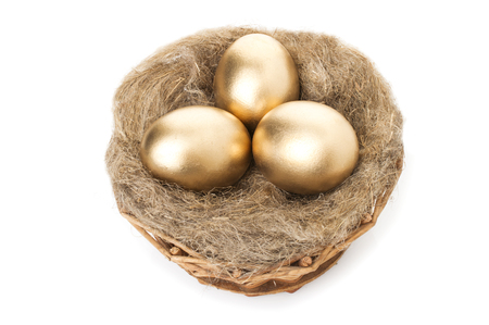Nest with golden eggs on a white background. Golden Eggs in Nest with of Dollars.