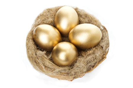 Nest with golden eggs on a white background