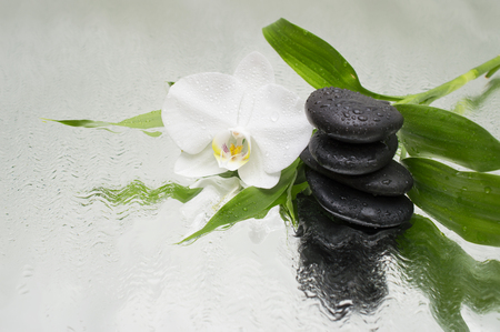 spa Background - orchids black stones and bamboo on water 스톡 콘텐츠