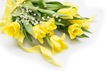 Yellow tulips with yellow ribbon on beige background