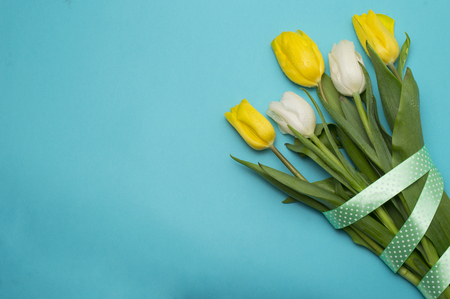 Yellow tulips with yellow ribbon on blue 스톡 콘텐츠 - 122215208