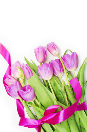 Pink tulips with pink ribbon on a white