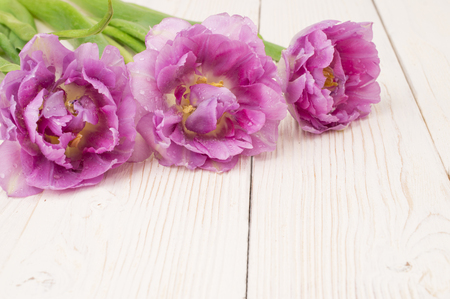 bouquet of colorful tulips on rustic wooden board, easter decoration 스톡 콘텐츠