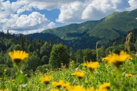 Beautiful view of alpine meadows in the Caucasus mountains Archivio Fotografico