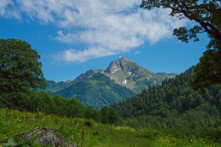 Beautiful view of alpine meadows in the Caucasus mountains 스톡 콘텐츠 - 129147464