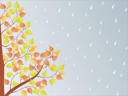 endlessness: autumn backgrounds Stock Photo