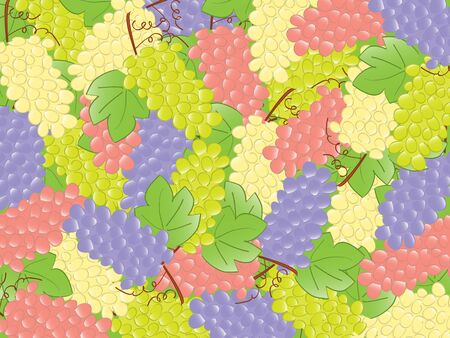 grapes background. vector photo