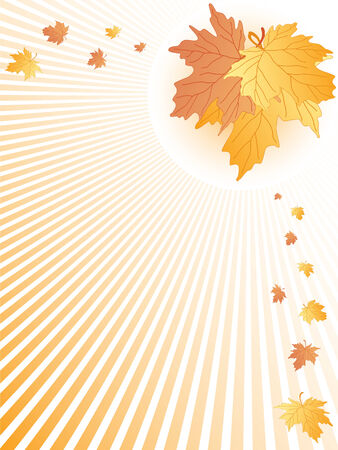 autumn leaves abstract. vector Illustration